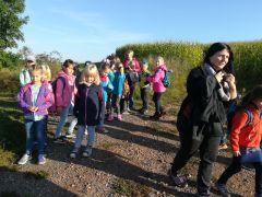 Wanderung zu den Fliegerwiesen Thierfeld